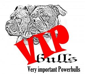 Logo VIPend1